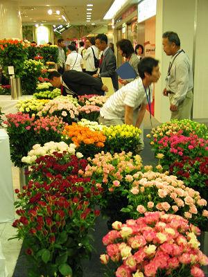 横浜で「日本ばら切花品評会」