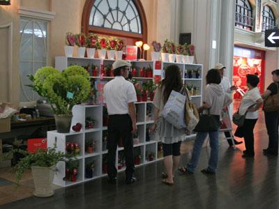 セントレア空港でハート型の植物を販売