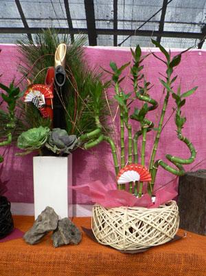 オリジナル商品の一つ、室内用の正月盆栽