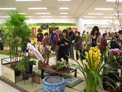 当番県・神奈川県の特別展示の一つ。室内での花装飾を提案する