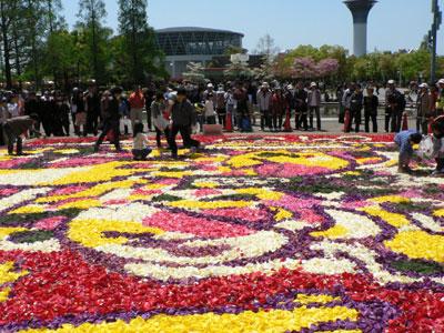 大阪花博から20年を記念して、チューリップの花びらで巨大なカーペット