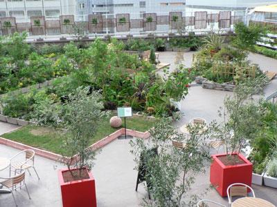 松坂屋名古屋店の屋上にオープンした屋上庭園「ソラテラス」。プラネットが施工・管理を担当