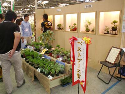 山野草を盆栽風に寄せた「草BONSAI」を展示する明松園がベストブース賞を受賞。前回からの連覇