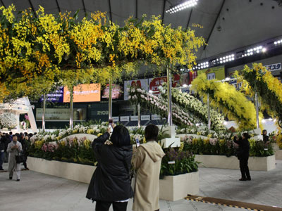 「世界らん展日本大賞2011」で来場者を華やかに迎える蘭のアーチ「オーキッドロード」