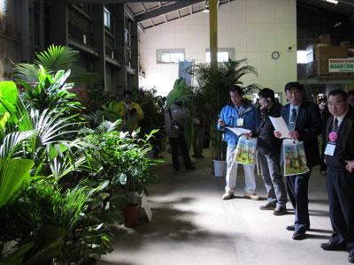 「いぶすき観葉フェア」で各農園が主力商品をアピール