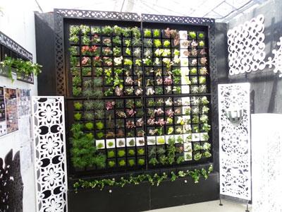 高島屋植物園の商談会で紹介、アポアが開発の壁面緑化「ピコガーデン」
