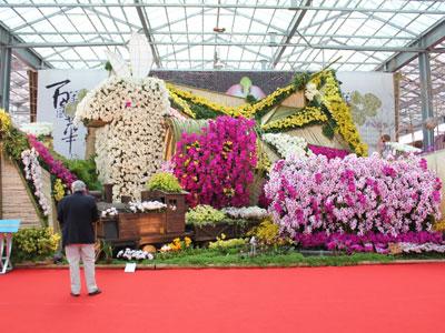 干支の兎をモチーフにファレなどをふんだんに使って豪華な「台湾国際蘭展」の主催者展示