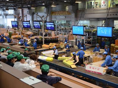 仙台市場のセリ風景