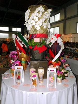 黒臼洋蘭園はコチョウランをらせん状に巻きつけた「彩華のワルツ」を紹介