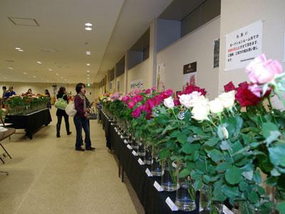 愛知名港花きのローズフェアで各社おすすめのバラを展示