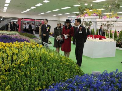 森田健作千葉県知事(右)の案内で、関東東海花の展覧会をご覧になる高円宮承子女王殿下と典子女王殿下