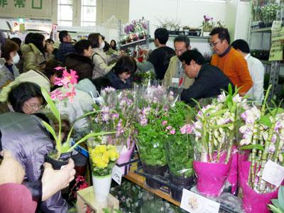 初の「フラワーマルシェ」。花を買う楽しさを発信