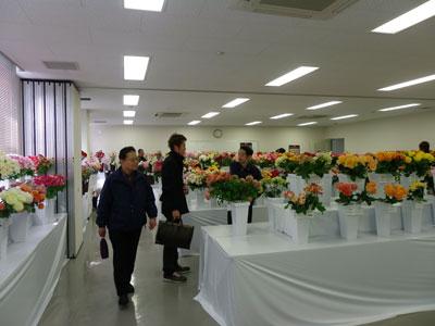 京都生花のトレードフェアでバラとカーネーション切花の展示