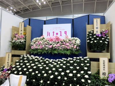 ネット花市場「ハナ・スタ」を運営するシフラは「開花菊」ほかを展示