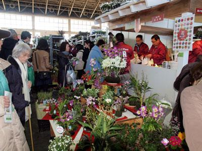 愛知県花き連鉢物PR委員会の「あいち花工房」。コケ玉を実演販売