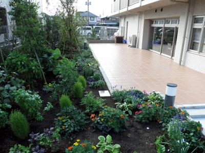 日比谷花壇が園芸療法を導入した高齢者向け住宅竣工