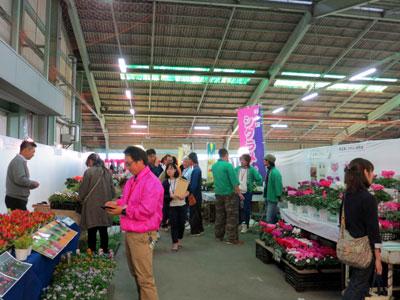 川越花き市場で「埼玉の花植木大商談会」