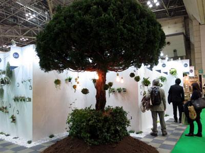 ディスプレイコンテスト大賞の花ごころDo!事業部。生きた樹木をシンボルに